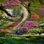 Amazing Things Blog Beautiful Flower Garden Photos