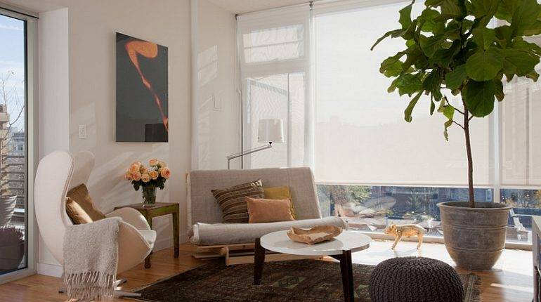 Living Room Feng Shui Ideas Tips Decorating Inspirations
